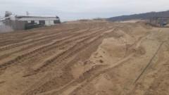Смокиня - 1 205 квадратни метра унищожени дюни