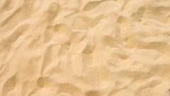 Превръщат пясъчниците в градинки заради COVID-19