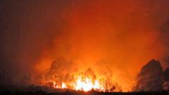 Огнеборци гасят пожари край Елхово и Кричим