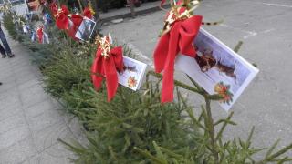 Семейство с шест деца чака Коледно чудо