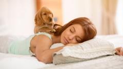 Куче в леглото за по-дълъг и дълбок сън