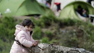 Дават земеделска земя на бежанците в Гърция