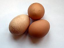 Съдът потвърди наличието на картел при производители на яйца и пилешко