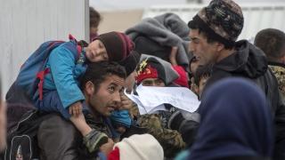 Шефът на Addeco: Мигрантите ще спасят IT сектора на Европа