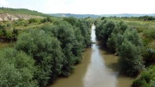 Басейнова дирекция не може да наложи наказания за река Вит