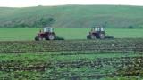 """ДФ """"Земеделие"""" е изплатил 1,25 млрд. лева по схемите  за директни плащания през  2012 г."""