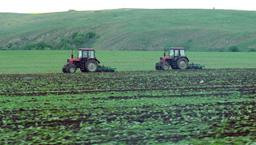 Производствените цени в растениевъдството падат, в животновъдството растат