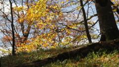 Слънчев и топъл октомври