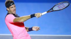Хуан Мартин дел Потро победи Давид Ферер и е на 1/4-финал в Акапулко