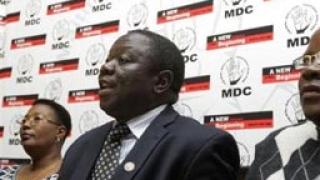 Да чукнем на дърво, Мугабе си отива