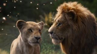 """Царствени резултати за """"Цар лъв"""""""