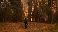 Евакуираха хиляди заради пожар край бреговете на Тахо, Калифорния