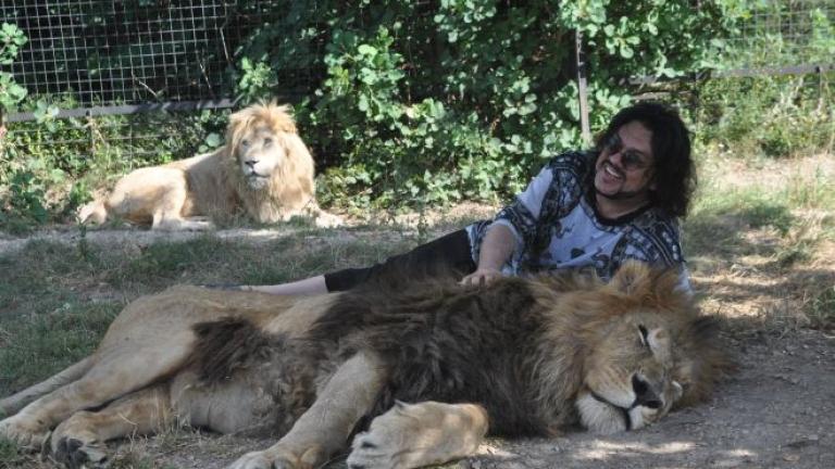 Филип Киркоров се търкаля с лъвове. Спаси бебе! (СНИМКИ)