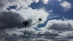 Разкъсана облачност, слънце, леко понижение на температурите