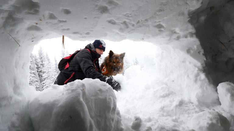 Дроновете помагат, но не могат да заменят  кучетата и спасителите в лавинните операции