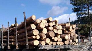 Задържаха дървесина, превозни средства и горски марки във Вършец и Видин