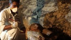 Откриха останки на храм в западната пустиня на Египет