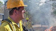 Близо 10 000 потушени пожара от началото на годината