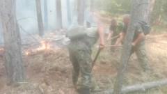 Вдигнаха кугъра отново да гаси пожара над Югово