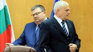 Цацаров нахока МВР за бедстващите кончета