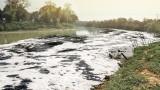Проверяват сигнал за замърсяване на река Осъм