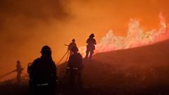 Евакуират граждани заради бързо разрастващ се пожар до Сан Франциско