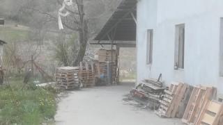 Складове, пътища и мебели - троянски бизнесмени спорят
