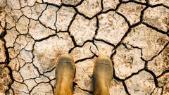 Катастрофална суша в Чехия