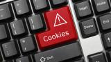 """""""Бисквитките"""" в интернет: Задават се нови правила за защита на личната информация"""