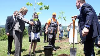 Залесяват замърсените райони край Кремиковци