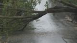 Силна буря затруднява движението по пътя София - Варна