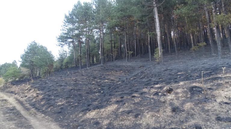 Втори ден бушува пожар край хасковското село Брягово