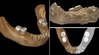 Впечатляващо откритие разкрива мистерията около древния Денисов човек