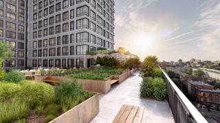 Нова мода в Ню Йорк: Люти чушки и домати растат по покривите