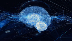 Машина превежда мозъчни вълни в изречения с честота на грешките до 3%