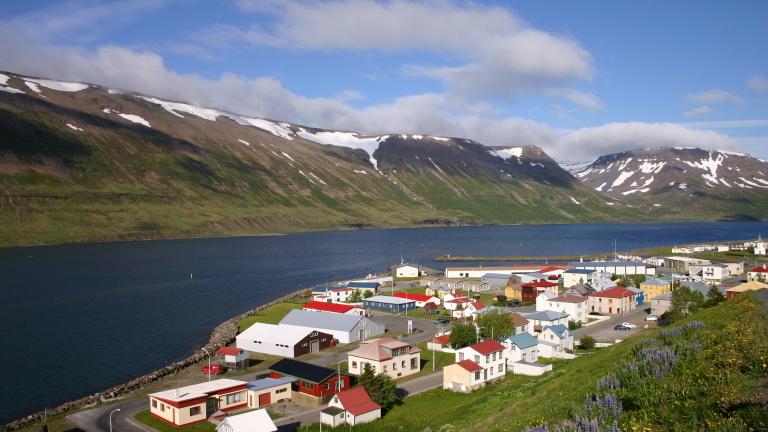 Действащият президент на Исландия Гудни Йоханесон спечели нов четиригодишен мандат