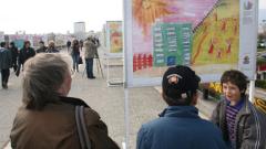 Изложба събира средства за деца с хемофилия