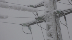 Лед скова голяма част от съоръженията на ЧЕЗ, 70 стълба паднаха