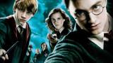 Какво е общото между Хари Потър и Vans