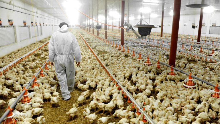 Министерството на земеделието обобщи шестгодишните резултати от хранителното ембарго за