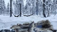 В хамак сред арктическата зима