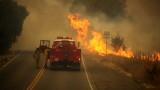 Евакуираха десетки хиляди заради пожарите в Калифорния