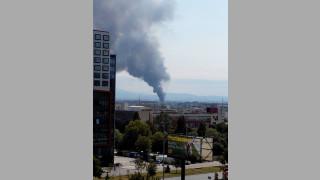 Пожарът в Казичене създал щети за 9 млн. лв.
