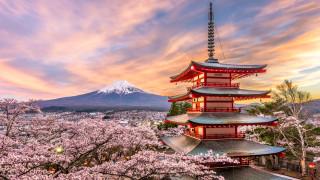 Средната цена на земята в Япония се покачи за първи път от 27 години