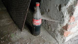 Какво се случва, когато пием  Кока-Кола?