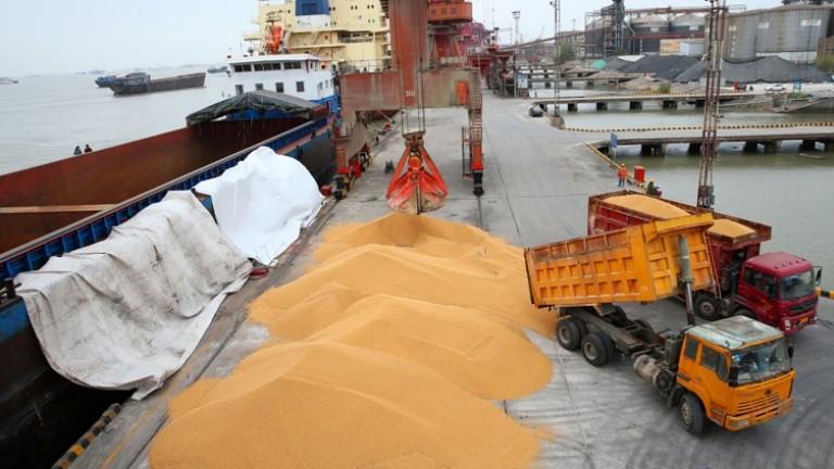 Китай спря с покупките на соя от Щатите