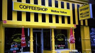 Затварят най-стария кофи шоп в Амстердам