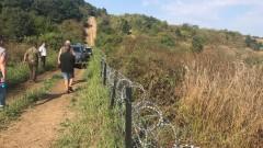 Румен Порожанов: Отрицателни са пробите за африканска чума по свинете