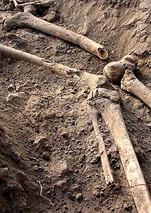 Погребение на млада жена и бебето й проучват археолози в Свети Спас