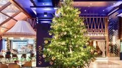 Най-скъпата елха в света струва $15 милиона
